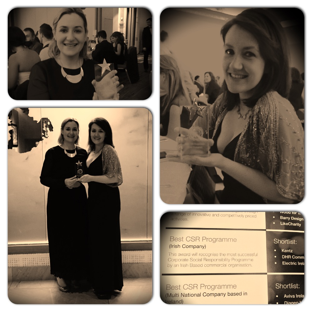 Fundraising Ireland Awards 2015