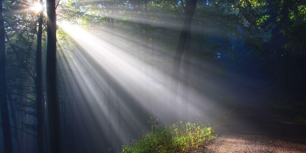 Liberties light